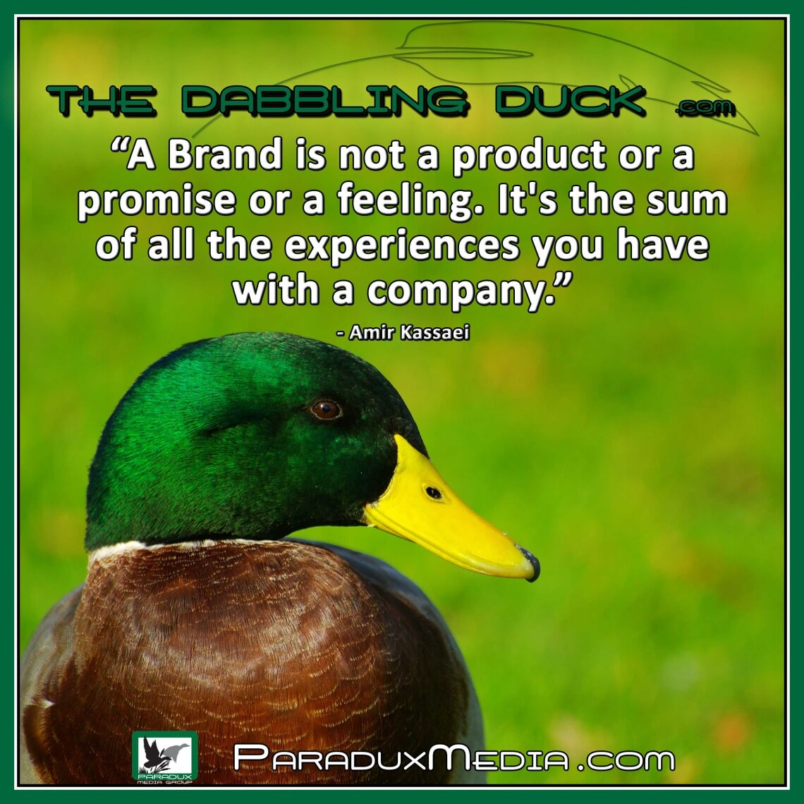 TheDabblingDuck-A-Brand-is-not-a-product-or-a-promise-or-a-feeling.-It's-the-sum-of-all-the-experiences-you-have-with-a-company