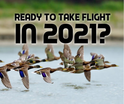 Ready to take flight in 2021 Business Growth in 2021