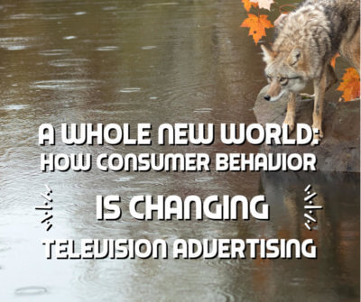 A Whole New World How Consumer Behavior is Changing Television Advertising